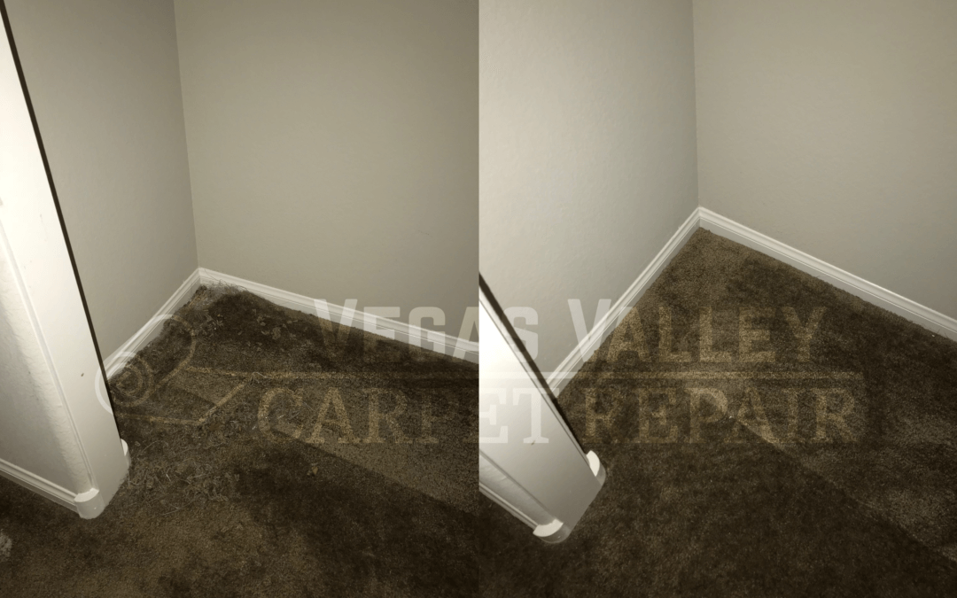 Closet Damage